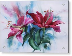 Wine Lillies In Pastel Watercolour Acrylic Print