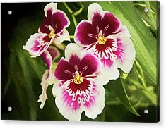 Wine Orchids- The Risen Lord Acrylic Print by Penny Lisowski