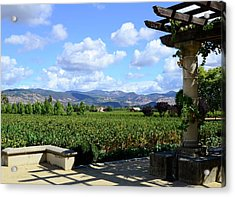 Acrylic Print featuring the photograph Wine Please by Corinne Rhode