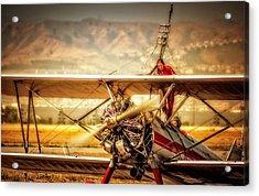 Wing Walker Acrylic Print