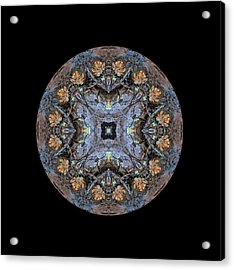 Winged Creatures In A Star Kaleidoscope #2 Acrylic Print