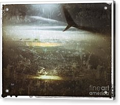 Winging It Acrylic Print