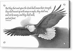 Wings As Eagles Acrylic Print