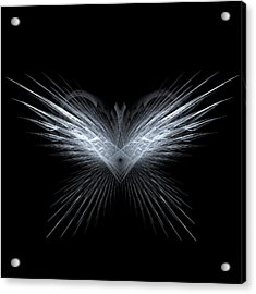 Wings Acrylic Print by Kim French