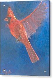 Wings Of A Prayer Acrylic Print by Bill Werle