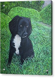 Acrylic Print featuring the painting Winnie by Tom Roderick