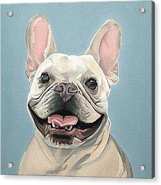 Winston Acrylic Print