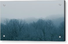 Winter Afternoon Acrylic Print