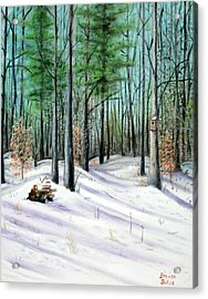 Winter Afternoon Acrylic Print by Brenda Baker
