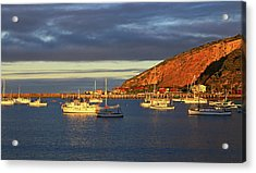 Acrylic Print featuring the photograph Winter Afternoon Sun At Friendly Bay by Nareeta Martin
