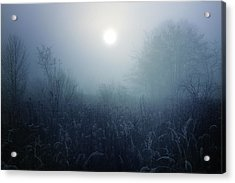 Winter Afternoon - Poland Acrylic Print by Cambion Art