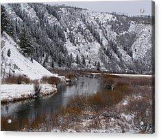 Acrylic Print featuring the photograph Winter Along The Salt by DeeLon Merritt