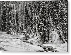 Winter Alpine Creek II Acrylic Print by Brad Allen Fine Art