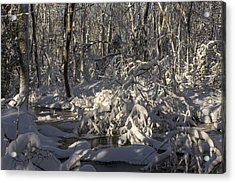 Winter At Borden Brook Acrylic Print