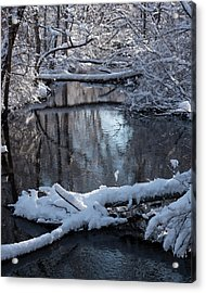Winter At The Brook Acrylic Print