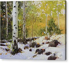 Winter Beauty Sangre De Mountain 2 Acrylic Print by Gary Kim