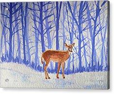 Winter Begins Acrylic Print by Li Newton