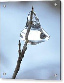 Acrylic Print featuring the photograph Christmas Bells by Glenn Gordon