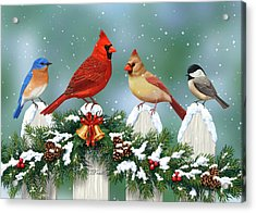 Winter Birds And Christmas Garland Acrylic Print by Crista Forest