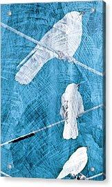 Acrylic Print featuring the mixed media Winter Birds by Frank Tschakert