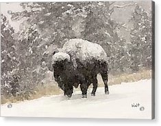 Acrylic Print featuring the digital art Winter Bison by Walter Chamberlain