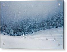 Winter Blizzard Acrylic Print by Evgeni Dinev