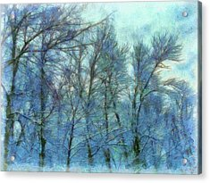 Winter Blue Forest Acrylic Print