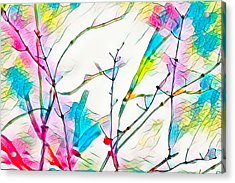 Winter Branch Colors Acrylic Print