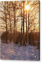Winter Break Acrylic Print by Wim Lanclus