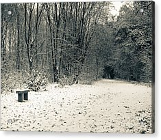 Winter Bridleway Acrylic Print by Andy Smy