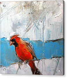 Winter Cardinal Acrylic Print by Claire Kayser