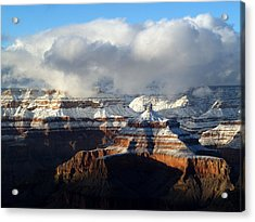Winter Acrylic Print by Carrie Putz