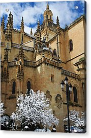 Winter Cathedral Acrylic Print