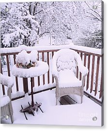 Winter Coat Acrylic Print by Ann Johndro-Collins