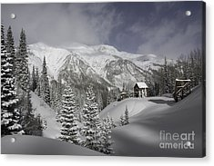 Winter Comes Softly Acrylic Print