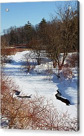 Winter Creek Lined With Red Osea Dogwood Acrylic Print