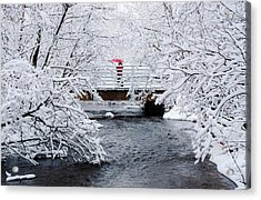 Winter Crossing Acrylic Print by Ron Day