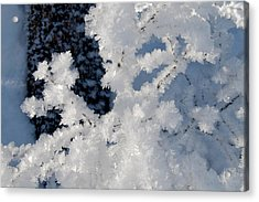 Winter Crystal Acrylic Print