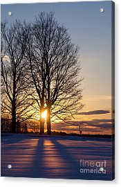 Winter, Crystal Spring Farm, Brunswick, Maine -78592 Acrylic Print by John Bald