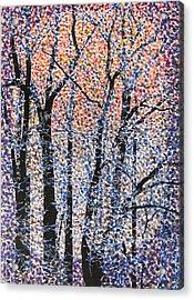 Winter Dawn  Acrylic Print