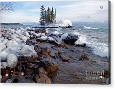 Winter Delight Acrylic Print by Sandra Updyke