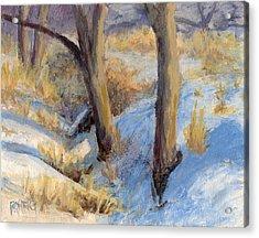 Winter Ditch Acrylic Print by David King