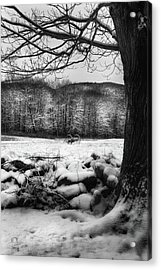 Acrylic Print featuring the photograph Winter Dreary by Bill Wakeley