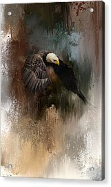 Winter Eagle 2 Acrylic Print