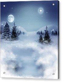 Winter Acrylic Print by Ellen Henneke