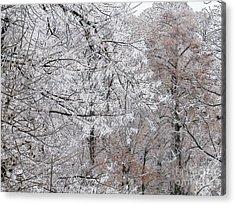 Winter Fantasy Acrylic Print