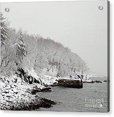 Winter Finery Acrylic Print by Faith Harron Boudreau