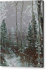 Acrylic Print featuring the digital art Winter Fog by Stuart Turnbull