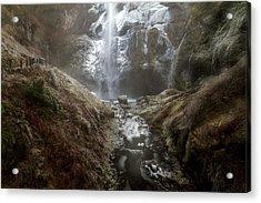 Winter Freeze At Multnomah Falls Acrylic Print by David Gn
