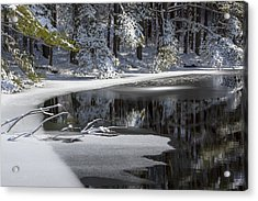 Winter Fresh Acrylic Print